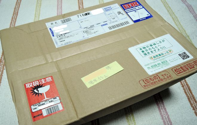 須藤農園から届いた菊芋
