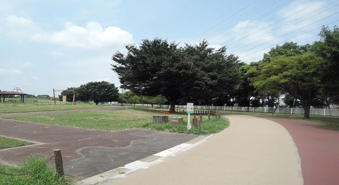 炎天下の総合公園