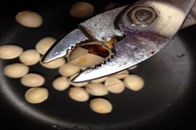 銀杏の処理:殻を割る