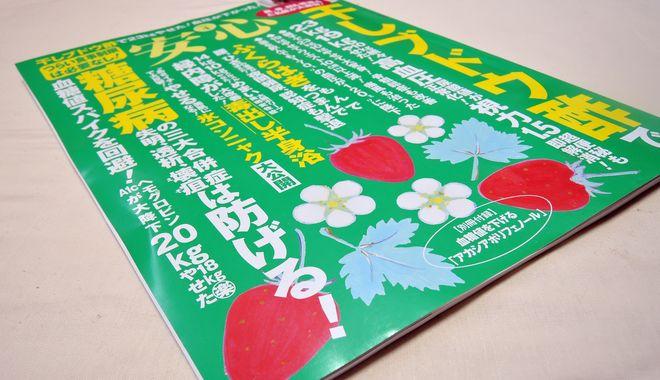 『安心』2017年4月号