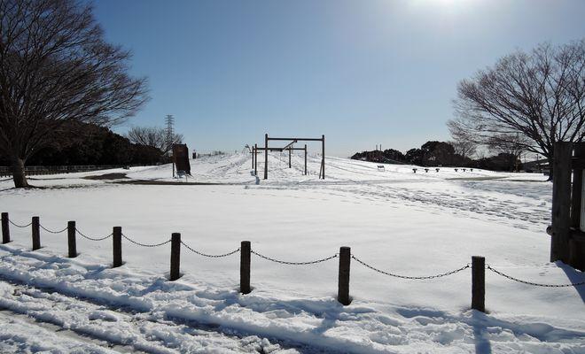 雪景色(県民健康福祉村)-1