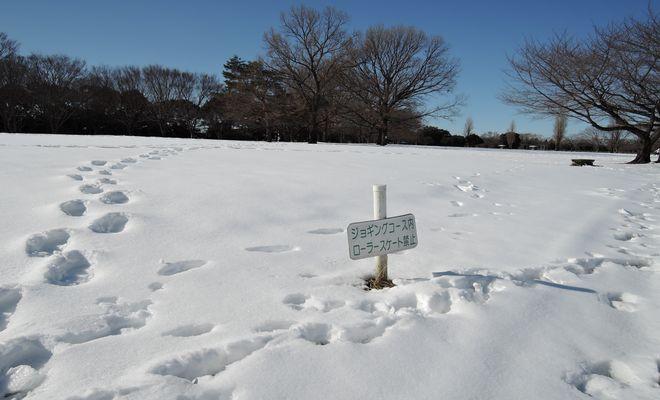 雪景色(県民健康福祉村)-2